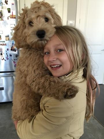 dewey bailey pup
